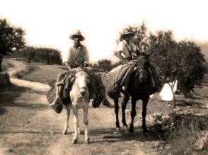 "Águedas"", padre e hijo, a lomos de sus caballerías"